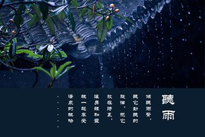 龙隐温泉PVC牌
